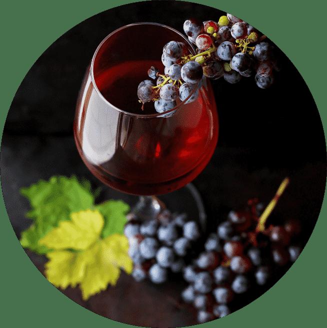 Weintipps von Weinradar